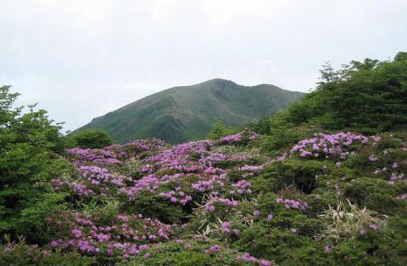 岩井ヶ岳 120