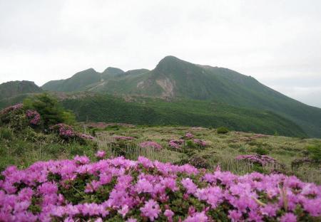岩井ヶ岳 146