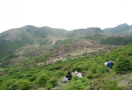岩井ヶ岳 143