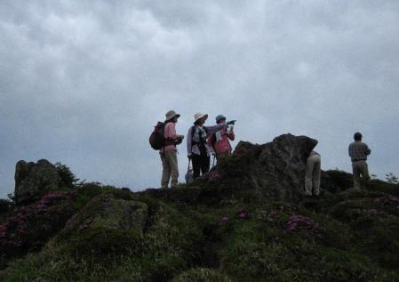 岩井ヶ岳 129