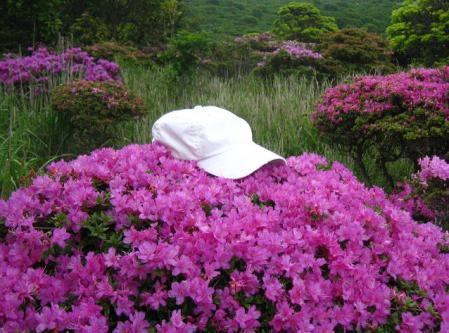 岩井ヶ岳 037