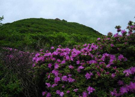 岩井ヶ岳 111