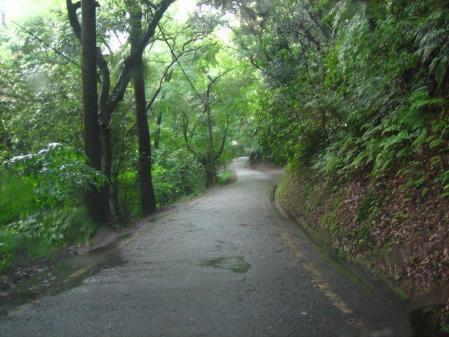 雨の清水と川下り 006