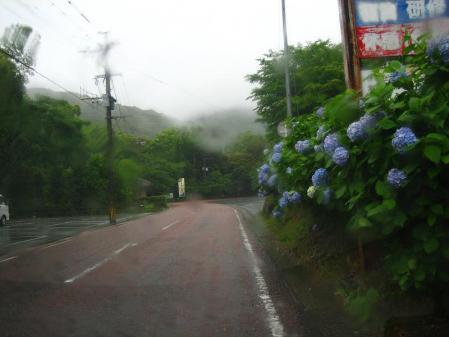 雨の清水と川下り 002