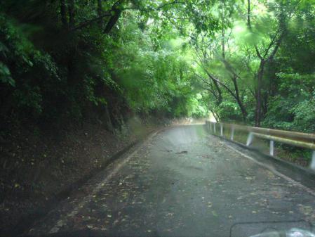 雨の清水と川下り 019