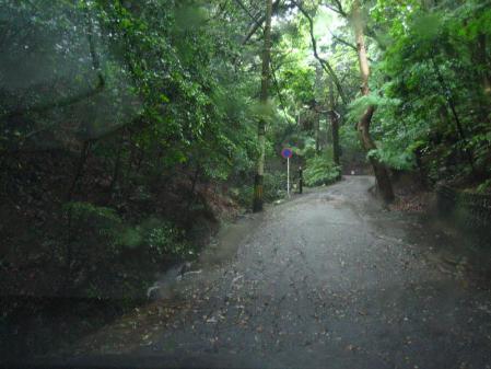 雨の清水と川下り 011