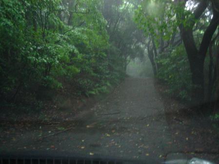 雨の清水と川下り 026