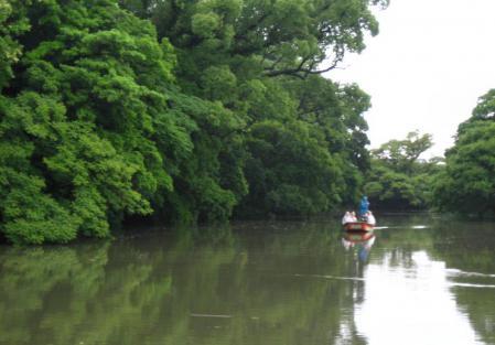雨の清水と川下り 057