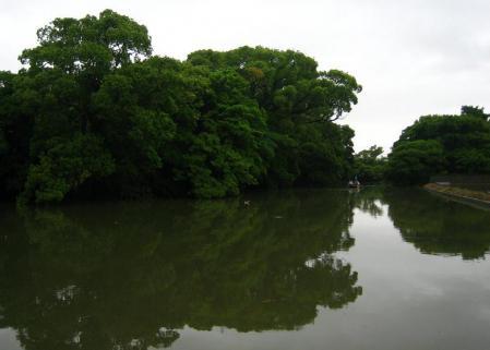 雨の清水と川下り 055