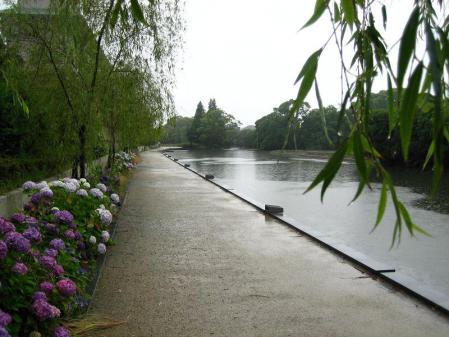 雨の清水と川下り 044