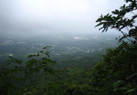 小岱山のトンボ 187