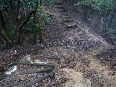 小岱山のトンボ 138