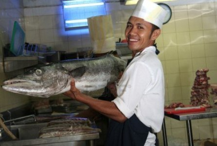3008260-chef-holding-giant-barracuda-fish.jpg