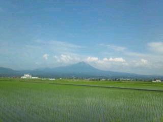 本日の大山