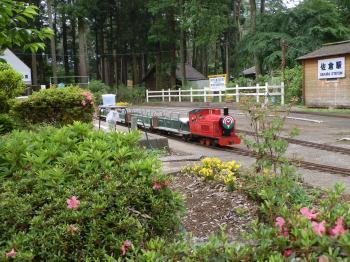 train1_convert_20120603155809.jpg