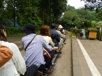 train3_convert_20120603155923.jpg