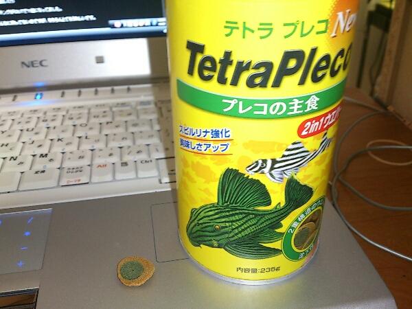fc2blog_201209132237397e5.jpg