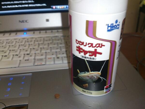 fc2blog_201209132237531b0.jpg