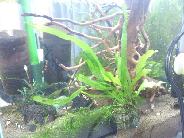 fc2blog_20121026002035d67.jpg