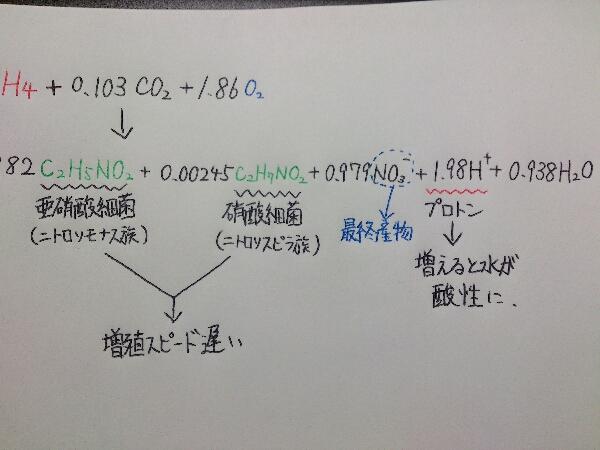 fc2blog_2012112822420597b.jpg