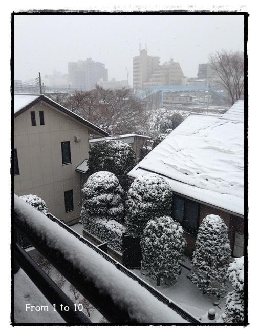 2014.2月大雪①