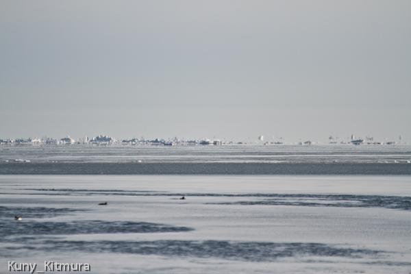 宙に浮く流氷