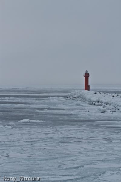 網走産の流氷?