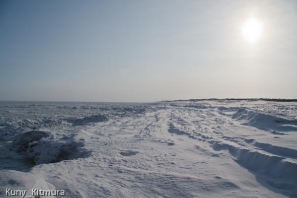 砕けた流氷が波に打ち寄せられ