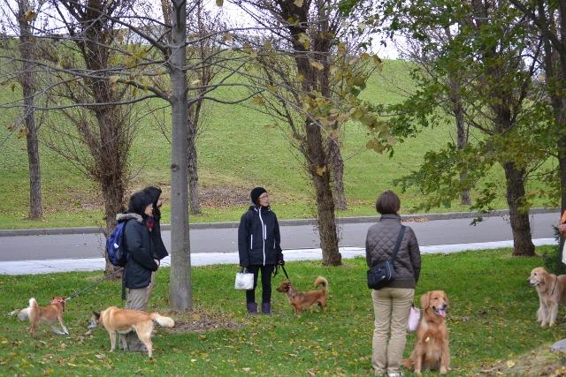 2012年10月28日お散歩会