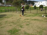 001_convert_20121114121444.jpg