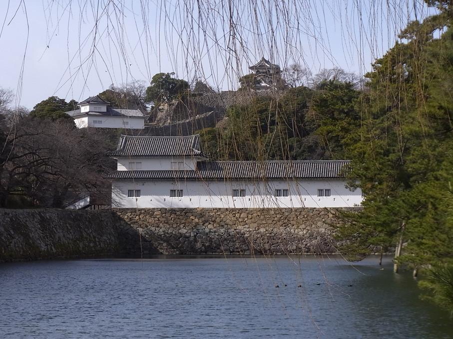 hikone44.jpg
