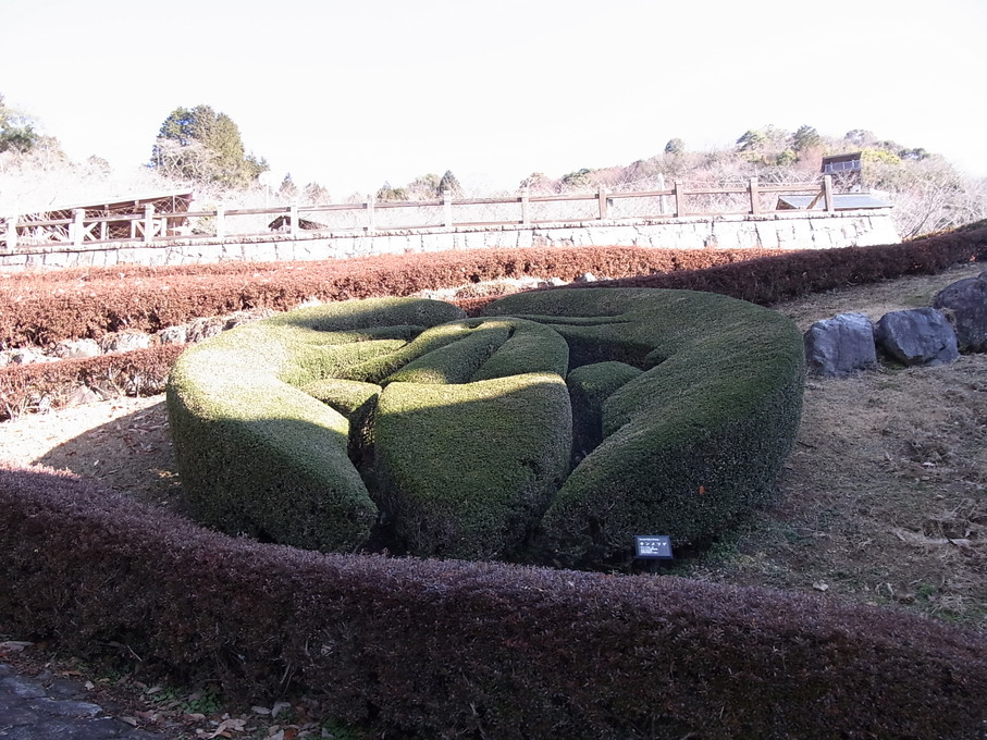 kaneyama01.jpg