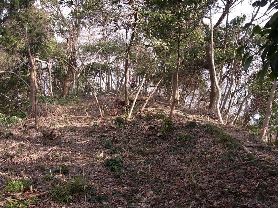 sawayama14.jpg