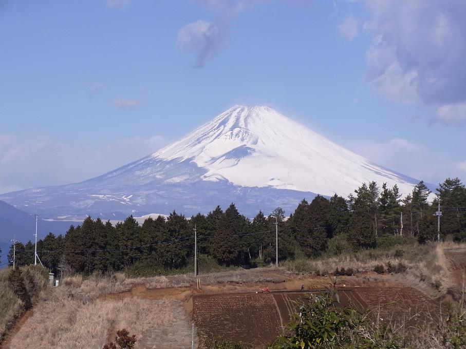 yamanaka02.jpg