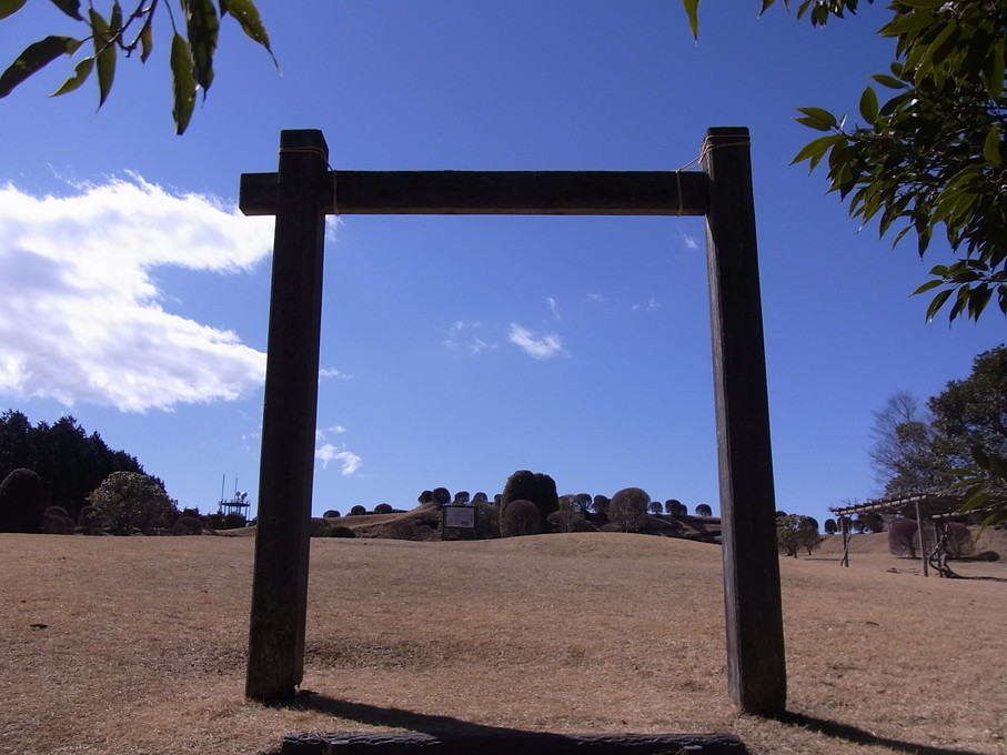 yamanaka21.jpg