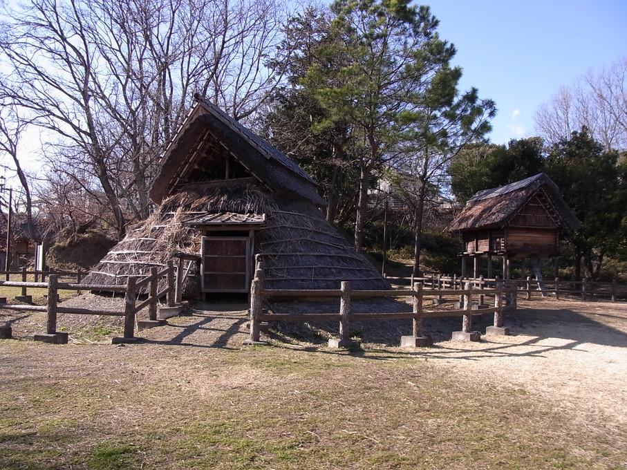 yamanaka26.jpg