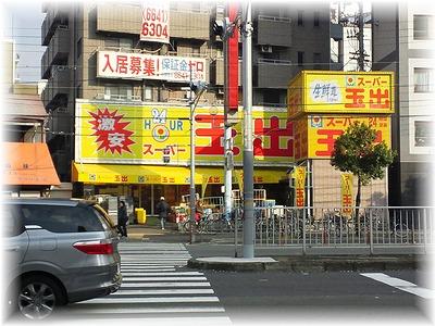 himawari1tamade.jpg