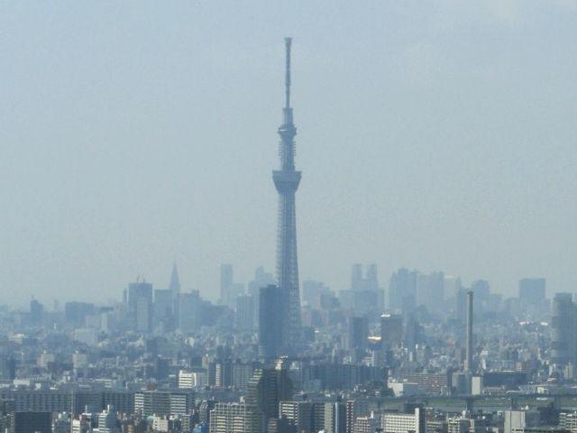 市川アイ・リンクタウン展望施設より東京スカイツリーを撮影