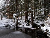 庭 光前寺本堂前庭園 雪景色 130116_cIMG_0255
