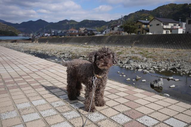 fusuya_140118_3.jpg
