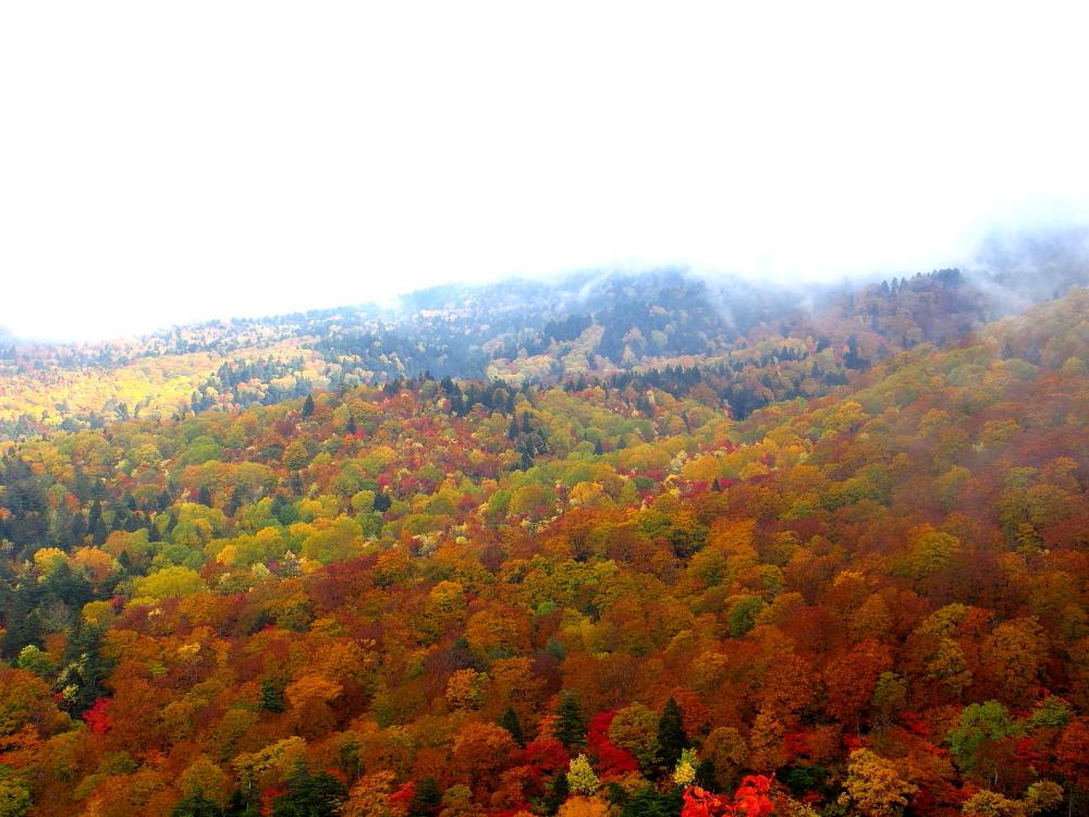 20121021_skyvalley2.jpg