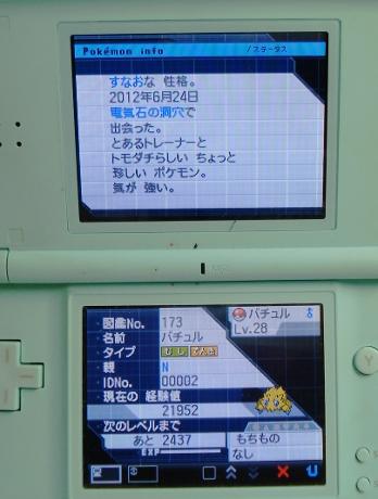 DSC00978_20120624211500.jpg