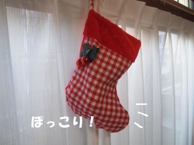 001_convert_20121226001738.jpg