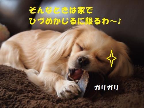 001_convert_20130307214342.jpg
