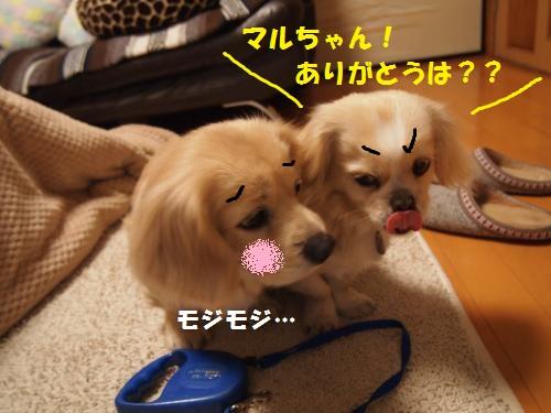 002_convert_20130121224342.jpg