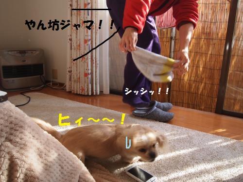 003_convert_20121229204621.jpg