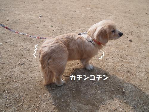 003_convert_20130120215157.jpg
