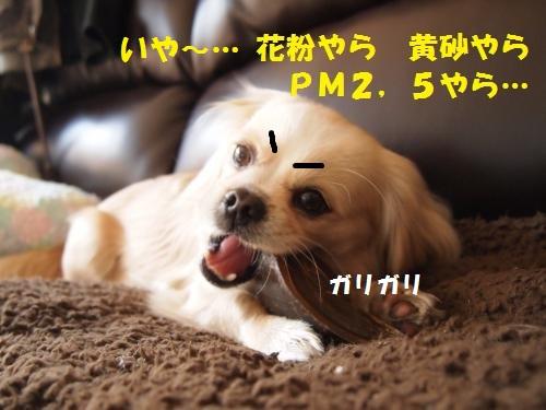 003_convert_20130307214119.jpg