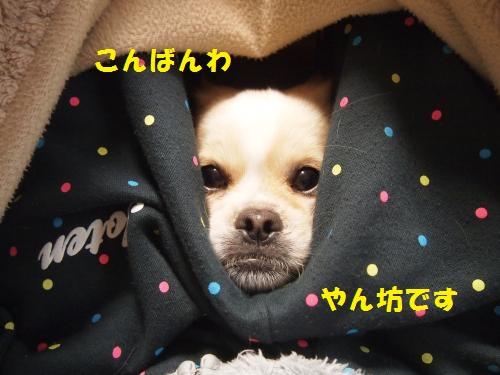 004_convert_20130114225149.jpg