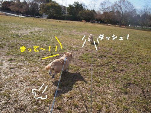004_convert_20130125213040.jpg